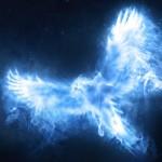 dumbledores-phoenix-patronus