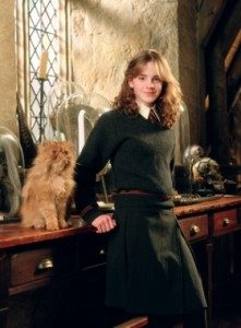 hermione-and-crookshanks