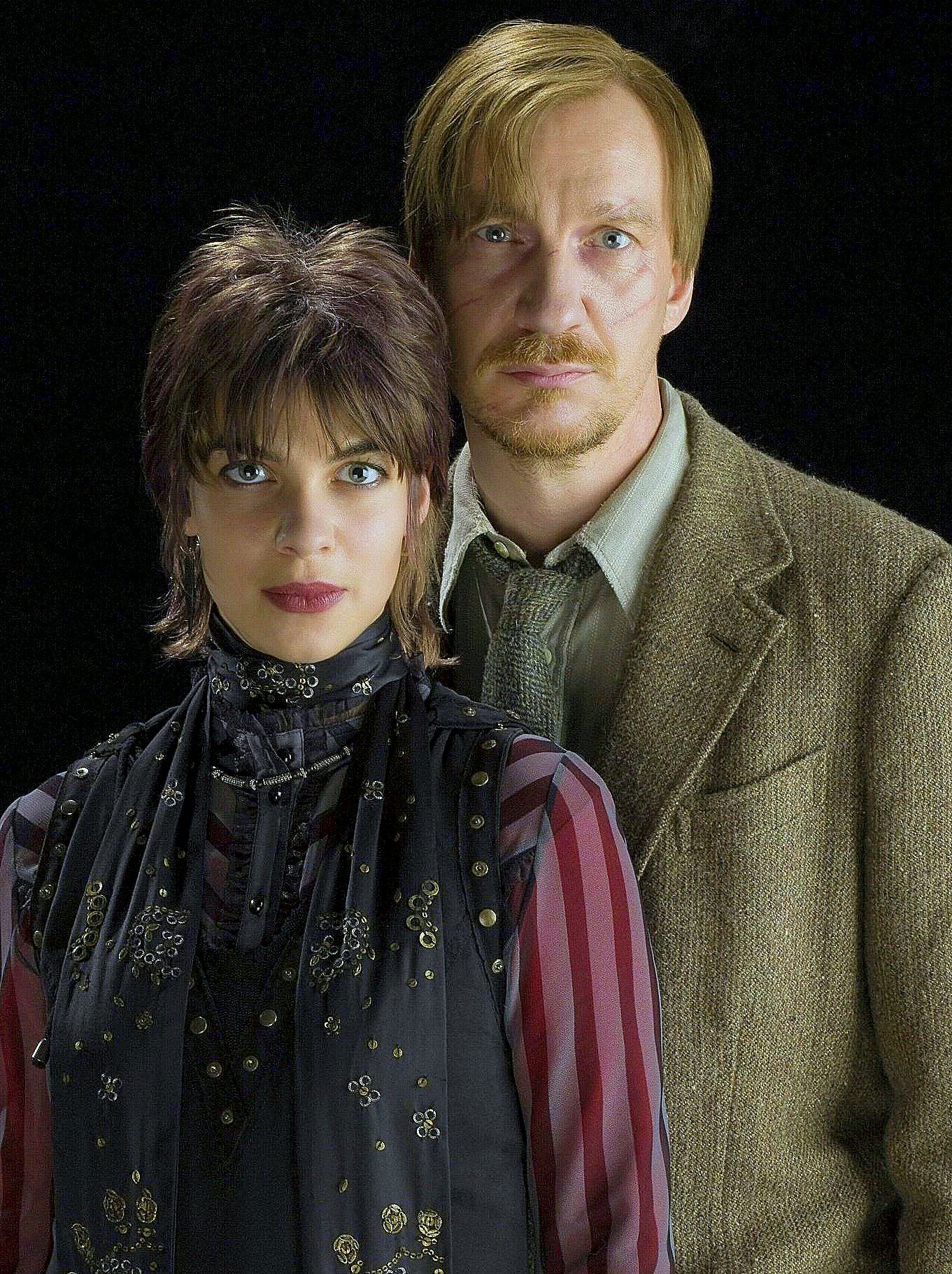 Tonks and Lupin portrait