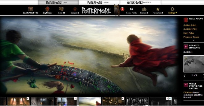pottermore art of the slytherin-gryffindor quidditch game