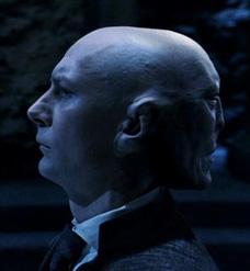 Voldemort and Quirrel