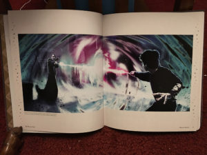 Two pages depicting Harry and Voldemort from the Character Vault
