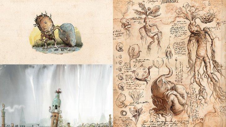 """Mandrake illustrations from """"Chamber of Secrets"""""""