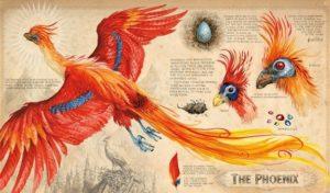 The Phoenix Chamber of Secrets Jim KAY 2016