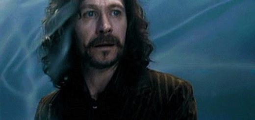 Sirius Black Order of the Phoenix Department of Mysteries