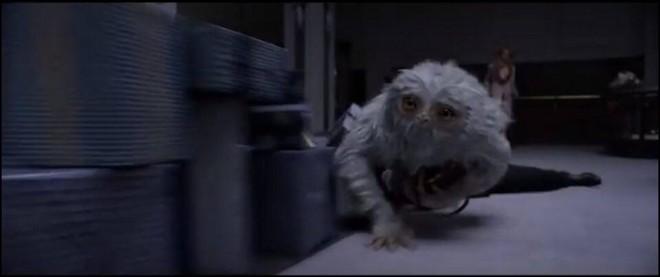 Fantastic Beasts trailer demiguise 2