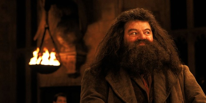 Hagrid in the great halll