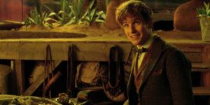 Newt Scamander Eddie Redmayne Fantastic Beasts