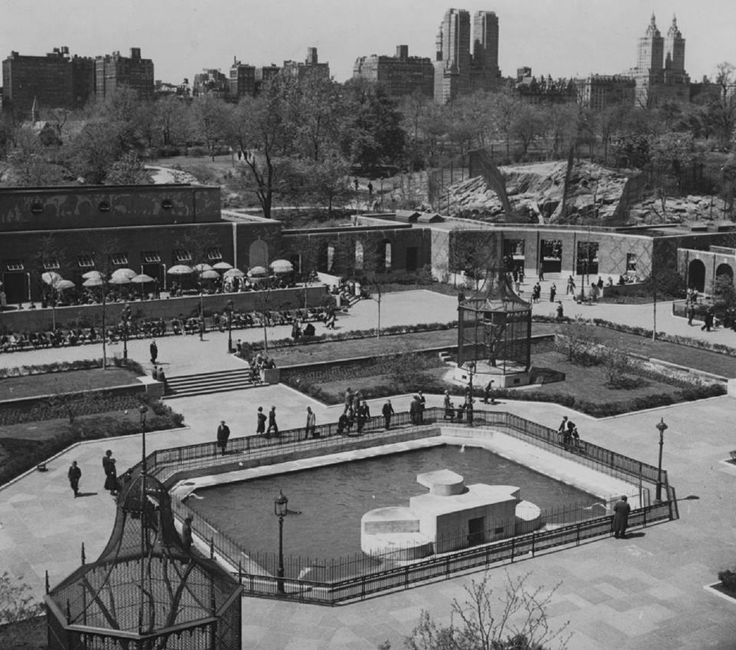 Central Park Zoo_03_1936