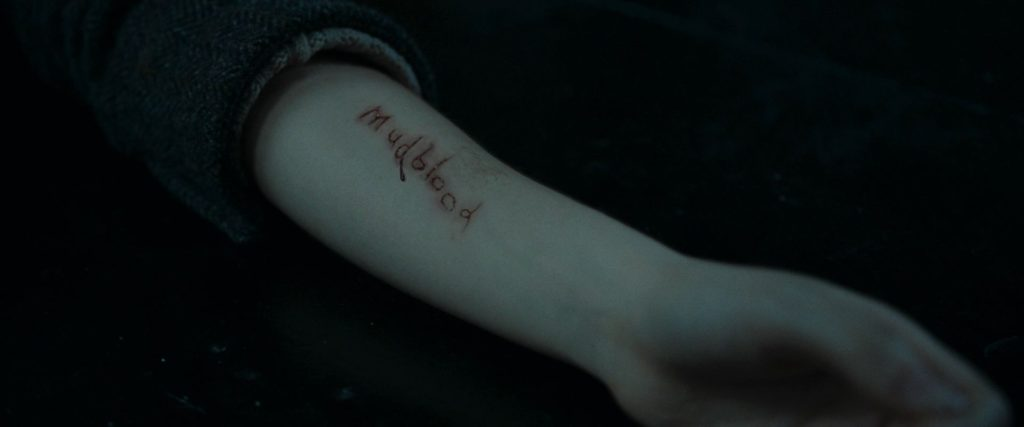 Mudblood Carved Into Hermione's Arm