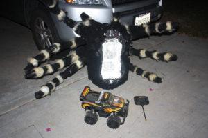 Spider + Car