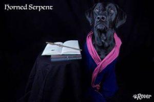 horned serpent dog rover.com