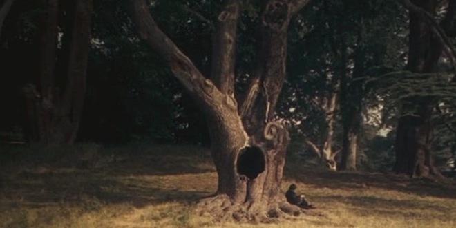ootp-tree