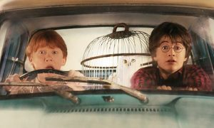 Harry and Ron looking scared in the Ford Angelina with Hedwig in her cage in the back