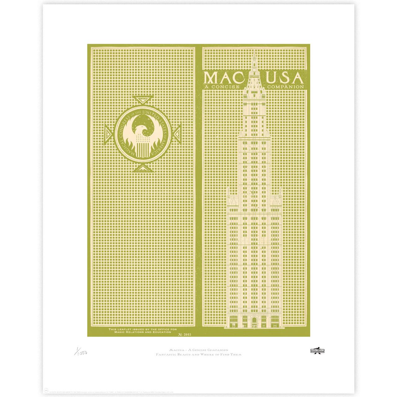 MACUSA: A Concise Companion