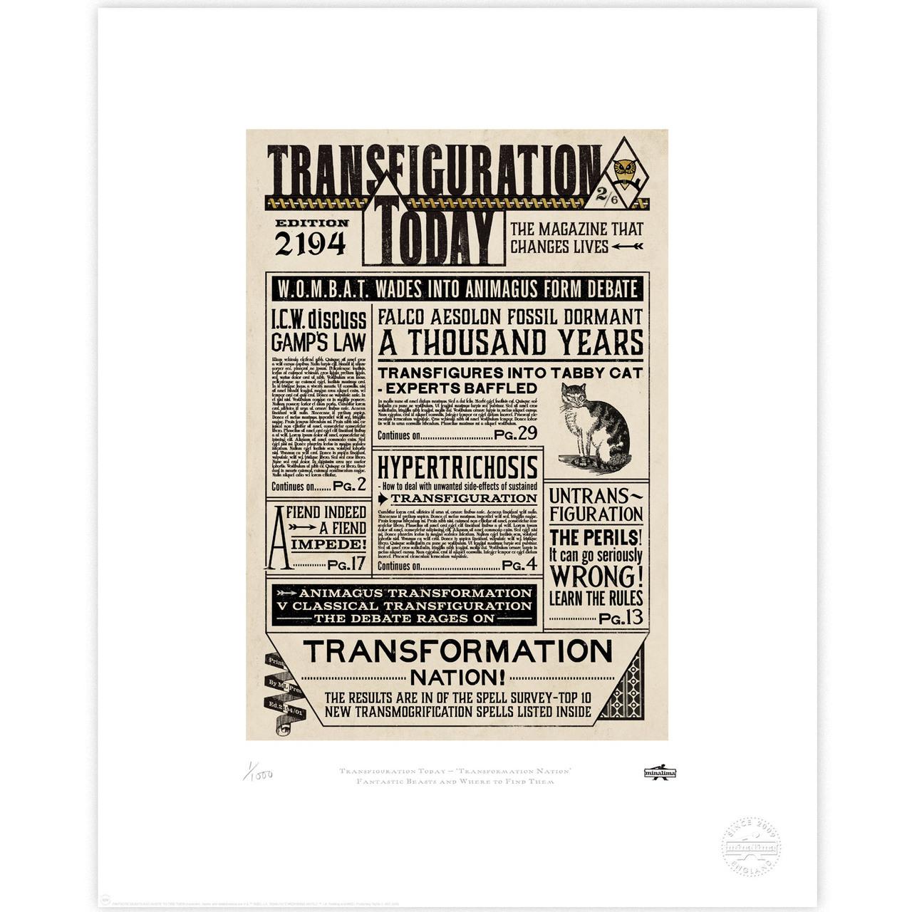 Transfiguration Today: Transformation Nation