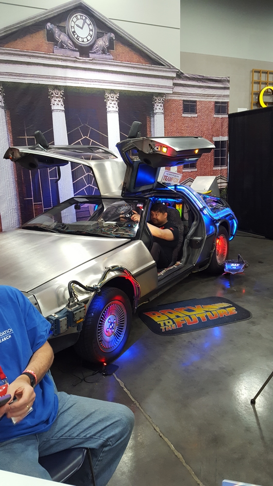 "The DeLorean from ""Back to the Future"""