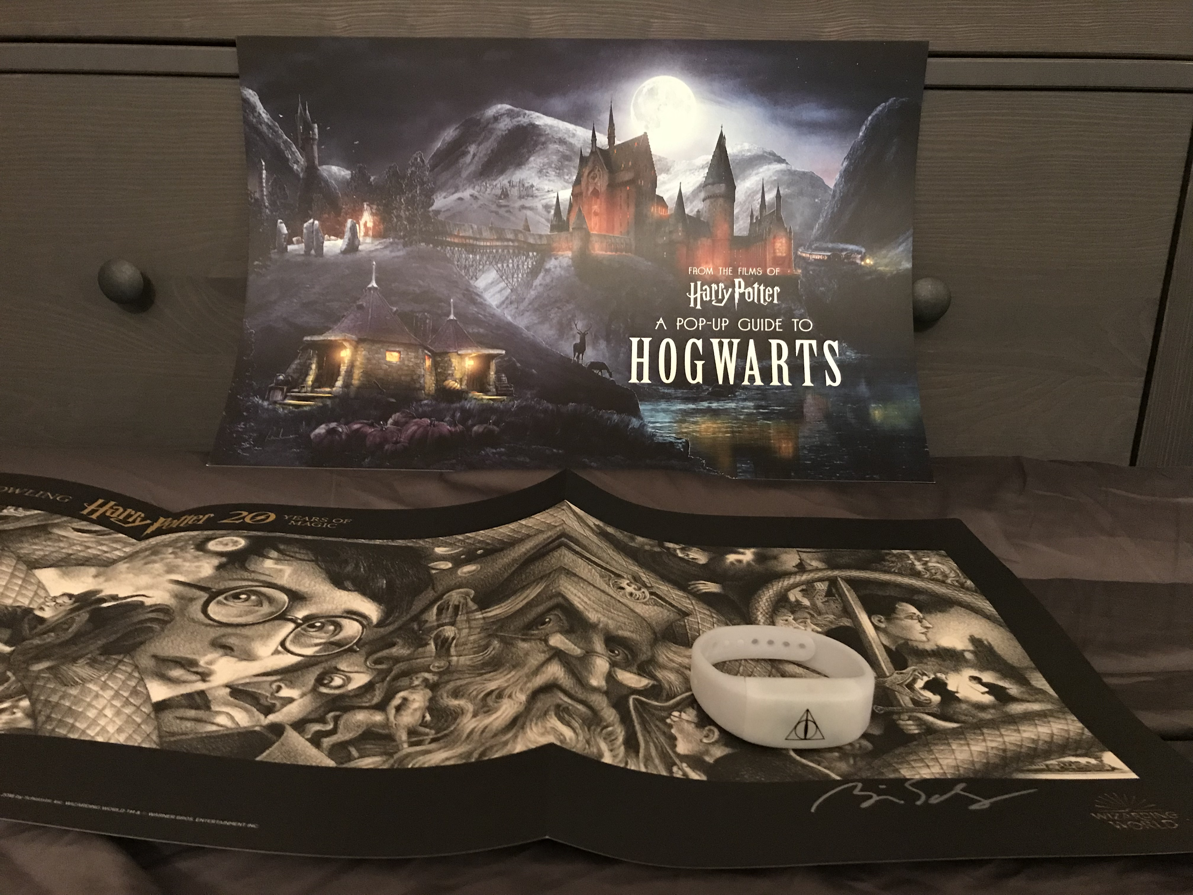 """Harry Potter"" 20th-anniversary poster and bracelet"