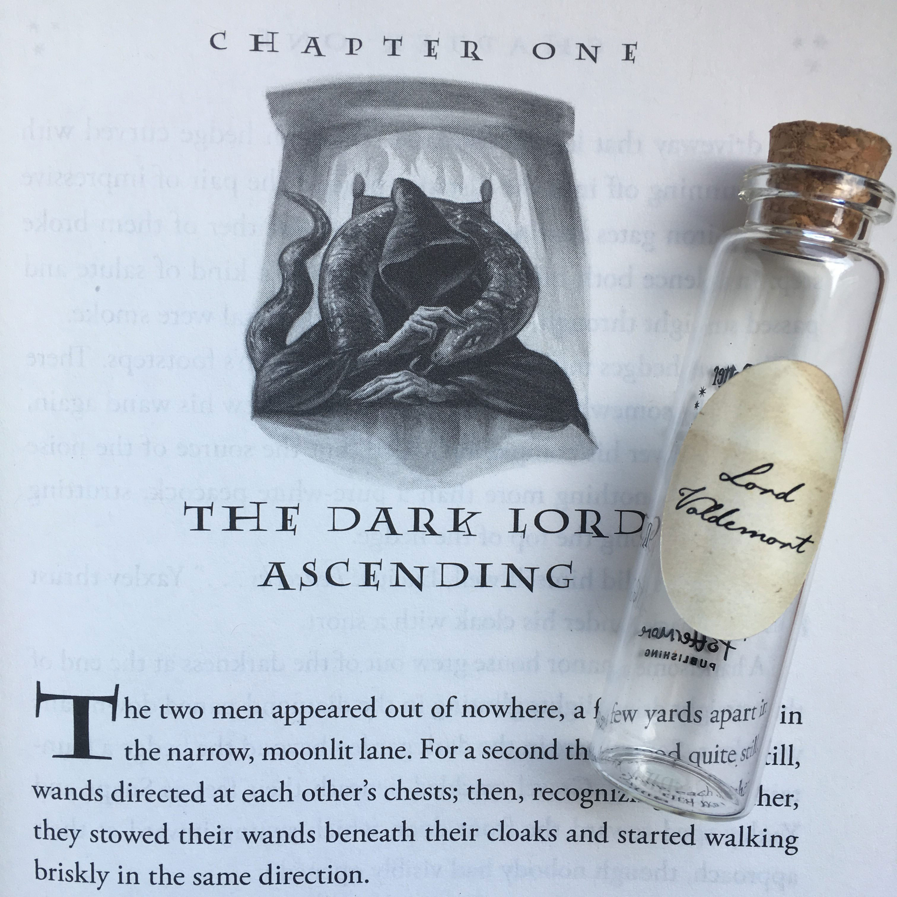 "Lord Voldemort's Pensieve vial lying on top of the first page of Chapter 1, ""The Dark Lord Ascending,"" in ""Harry Potter and the Deathly Hallows"""