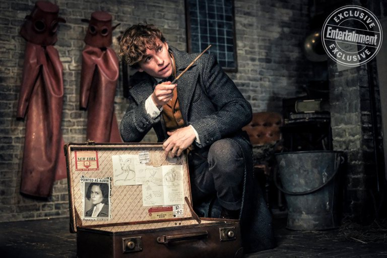 Newt woos an animal into his case in the basement of his London workshop.