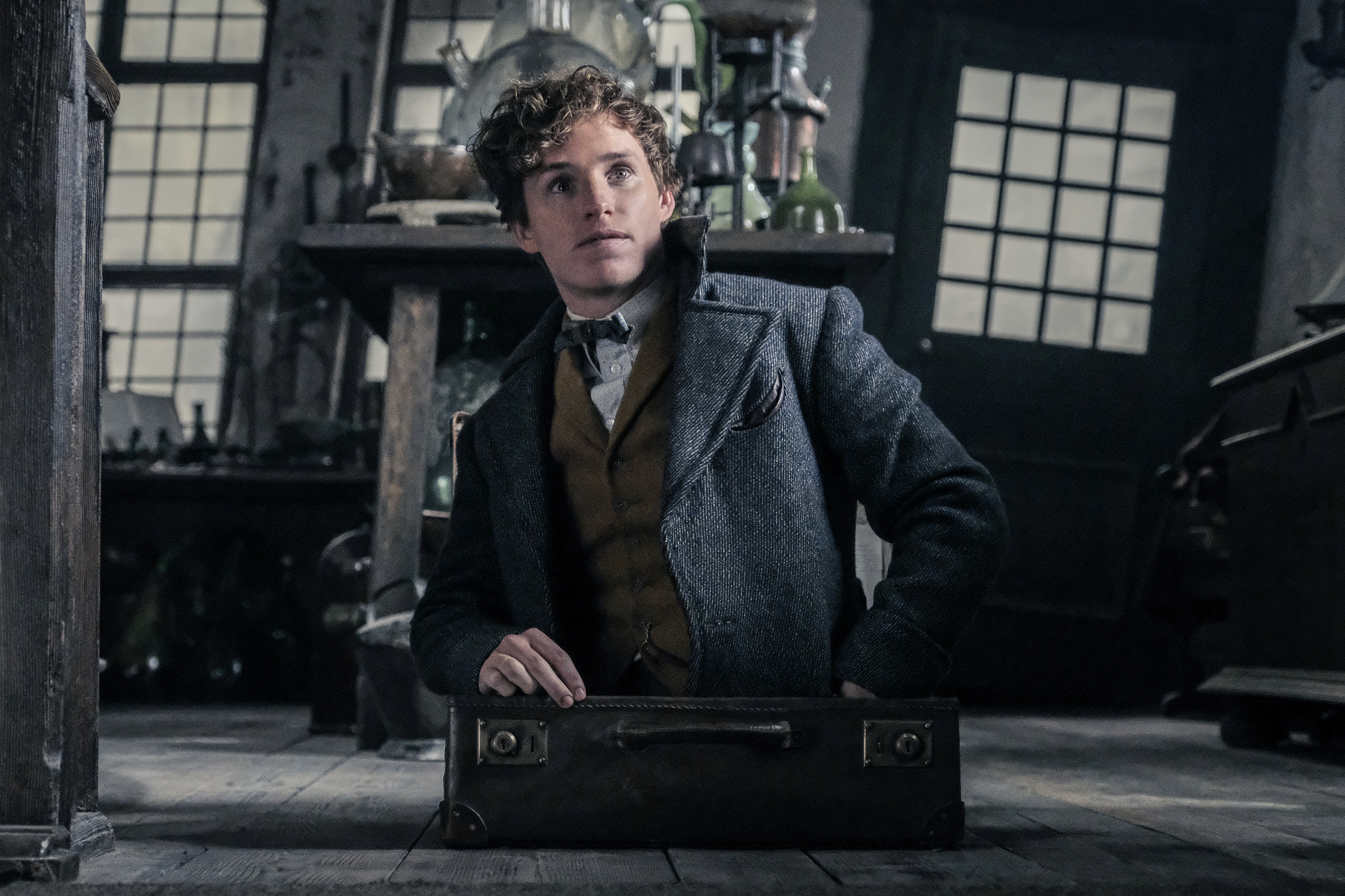 Newt Scamander emerging from his case