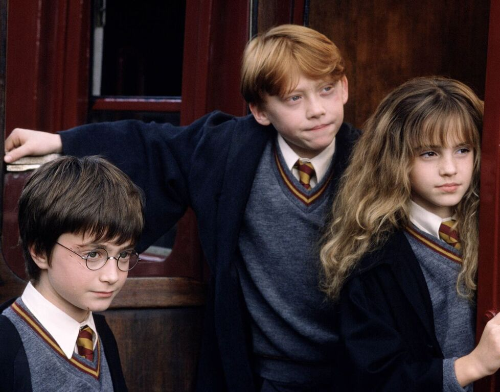 Harry, Ron, and Hermione leave Hogwarts.