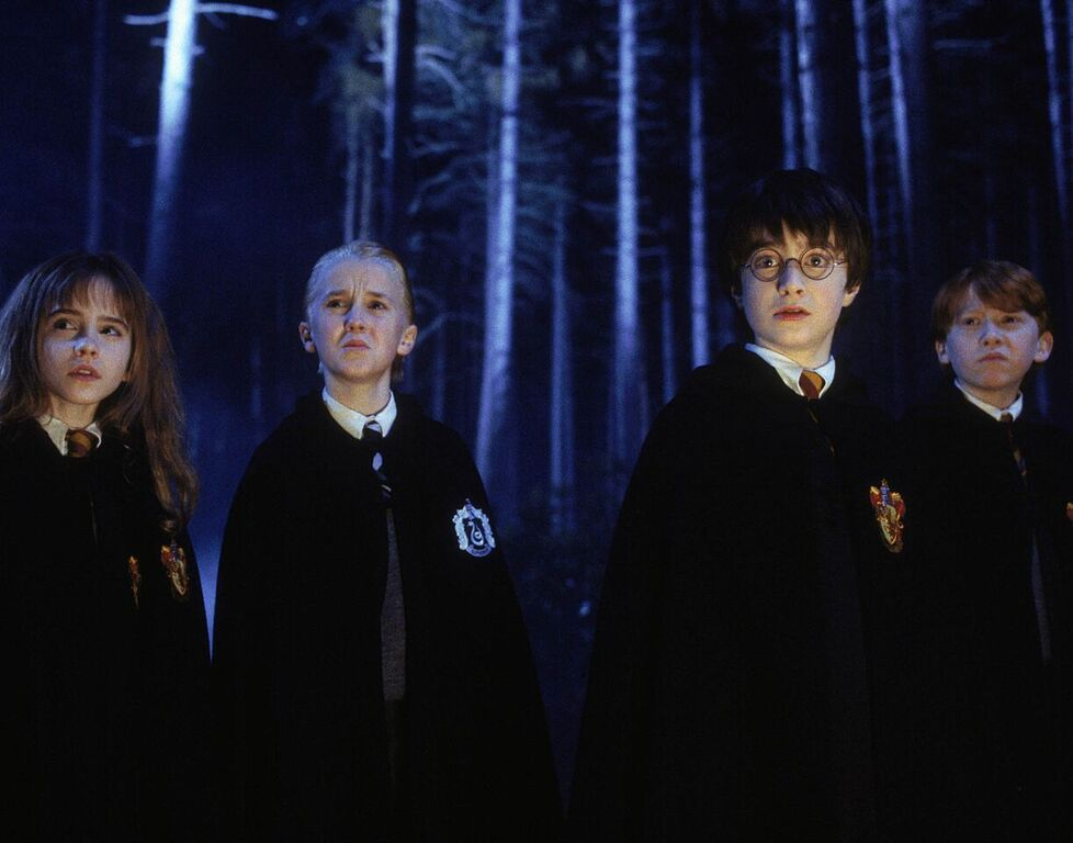Hermione, Draco, Harry, and Ron serve detention in the Forbidden Forest.