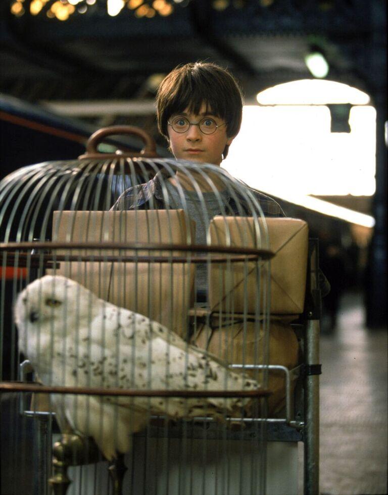 Harry finds platform nine and three-quarters.
