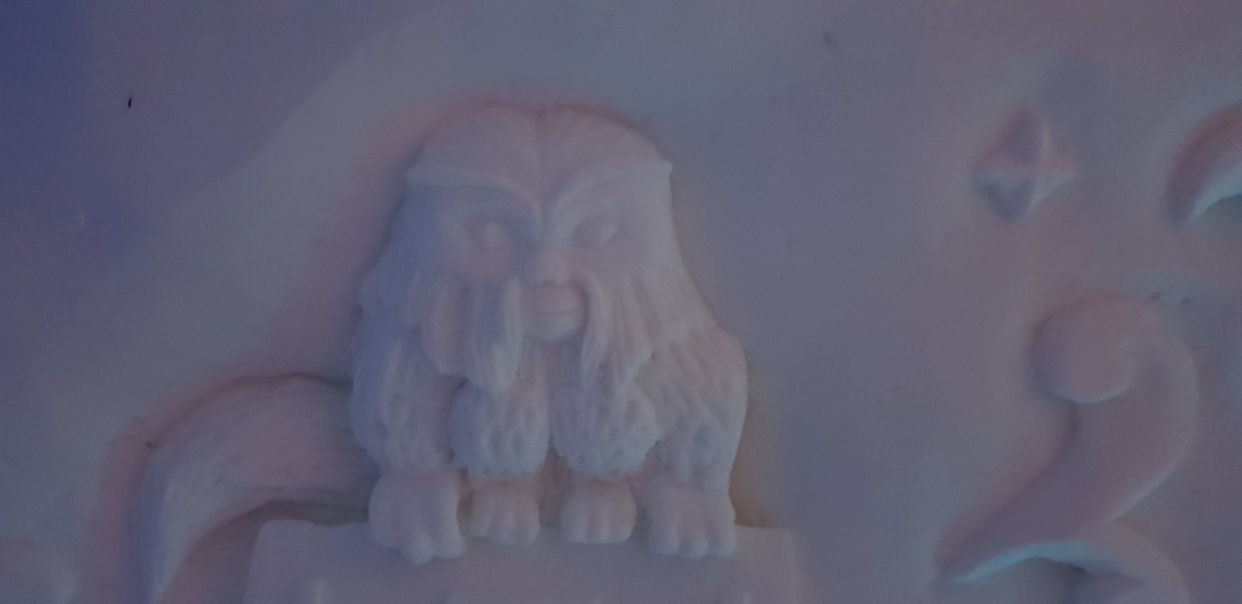 The Ice Hotel contains a carving of a Demiguise.