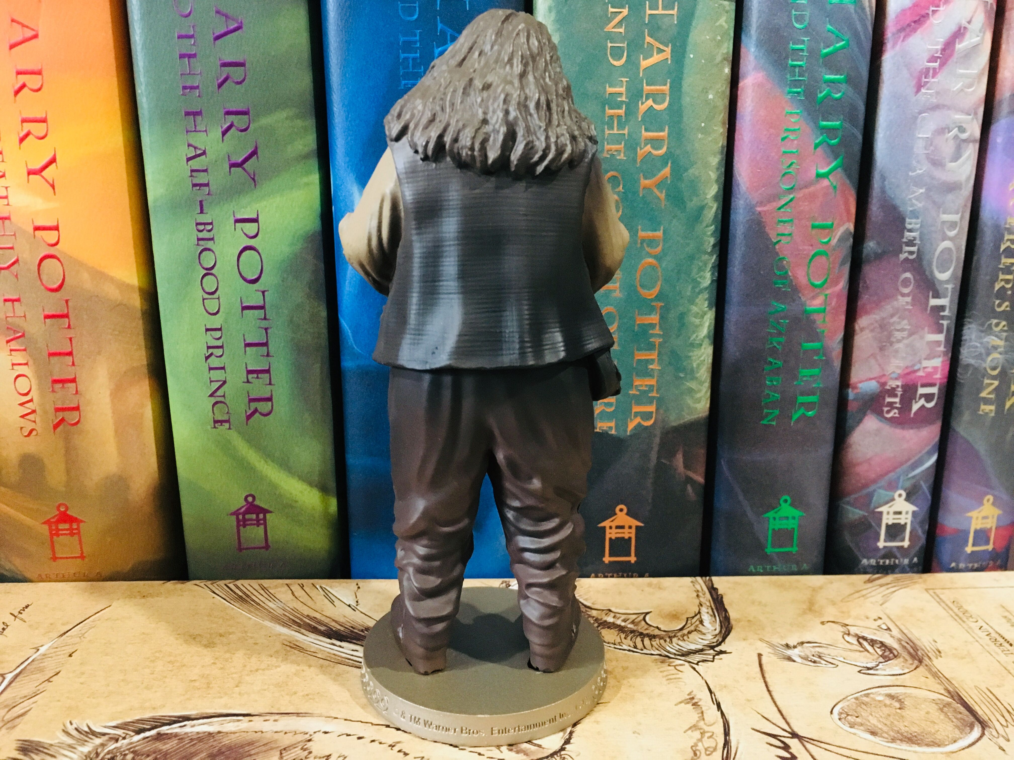 From the back, one can see Hagrid's wrinkled pants and bushy hair.
