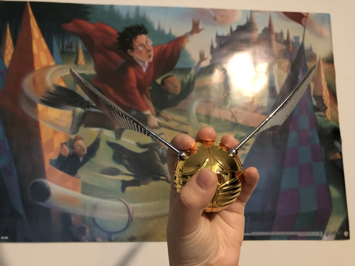 GOLDEN SNITCH™ with Mary GrandPré Quidditch art in the background