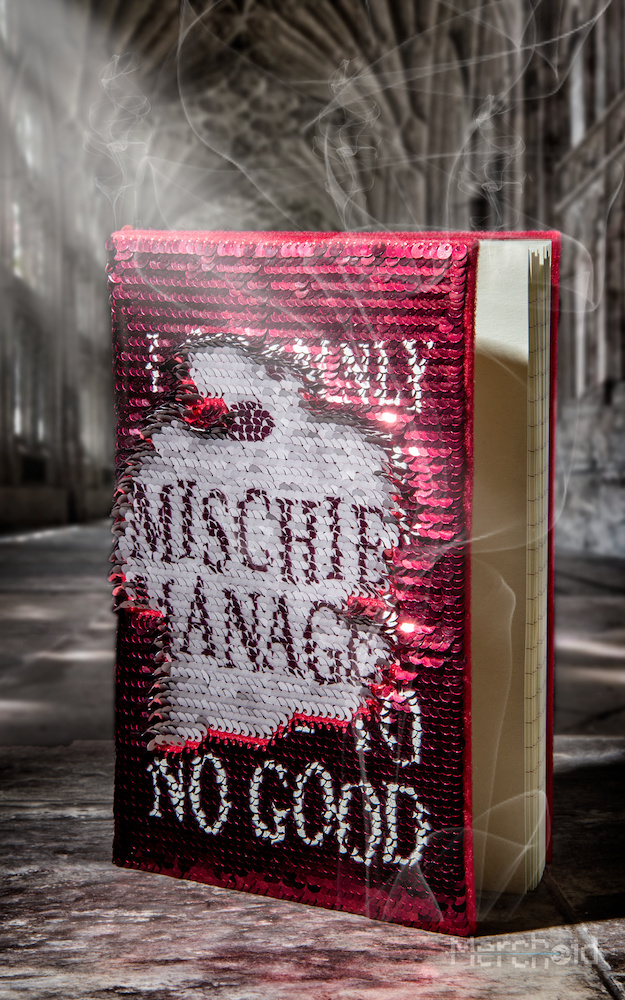 The Marauder's Map sequin notebook pays tribute to the infamous Hogwarts troublemakers.
