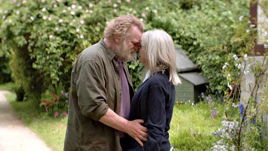 "Brendan Gleeson and Diane Keaton share a tender moment in ""Hampstead""."