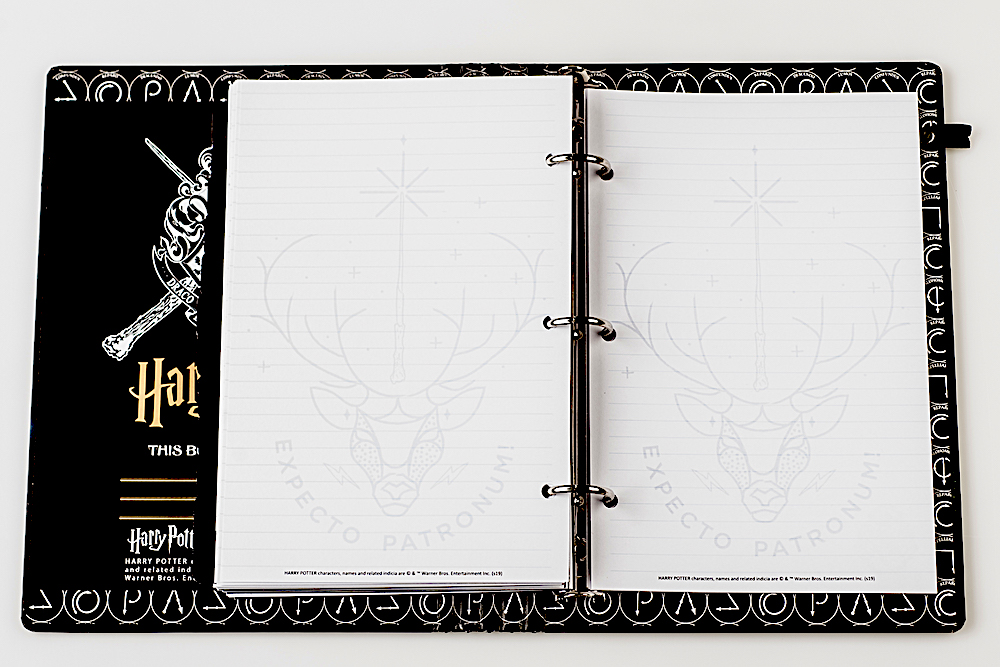 ConQuest Journals Celestial Planner lined pages