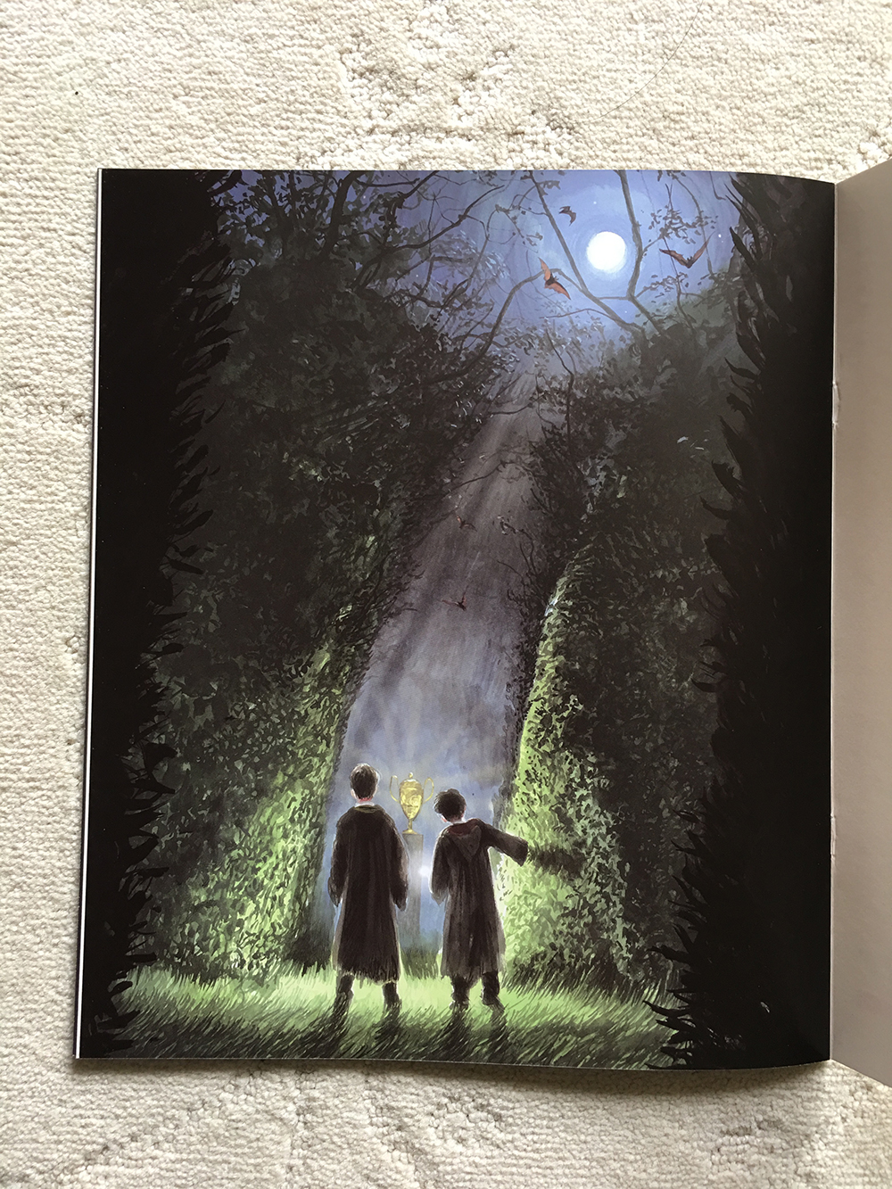 """Interior from illustrated """"Goblet of Fire"""" preview booklet"""