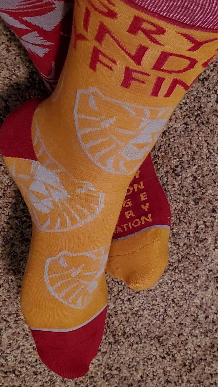 Harry Potter Gryffindor Crew Socks, modeled golden sock with lion, from Hallmark Gold Crown