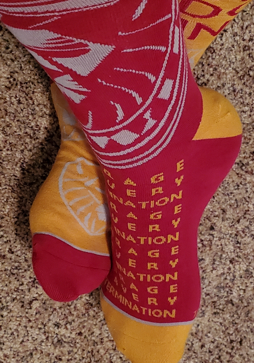 Harry Potter Gryffindor Crew Socks, modeled red sock with attributes and lion, from Hallmark Gold Crown