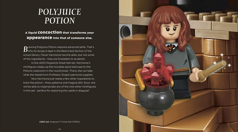 """The guide will combine facts about the """"Potter"""" series with information and details about the corresponding LEGO set or minifigure."""