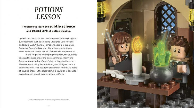 "The ""Potions Lesson"" scene showcases Seamus Finnigan and his exploding cauldron."