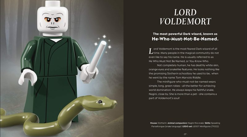 Information about the characters are also included, including their Hogwarts House and any special skills.