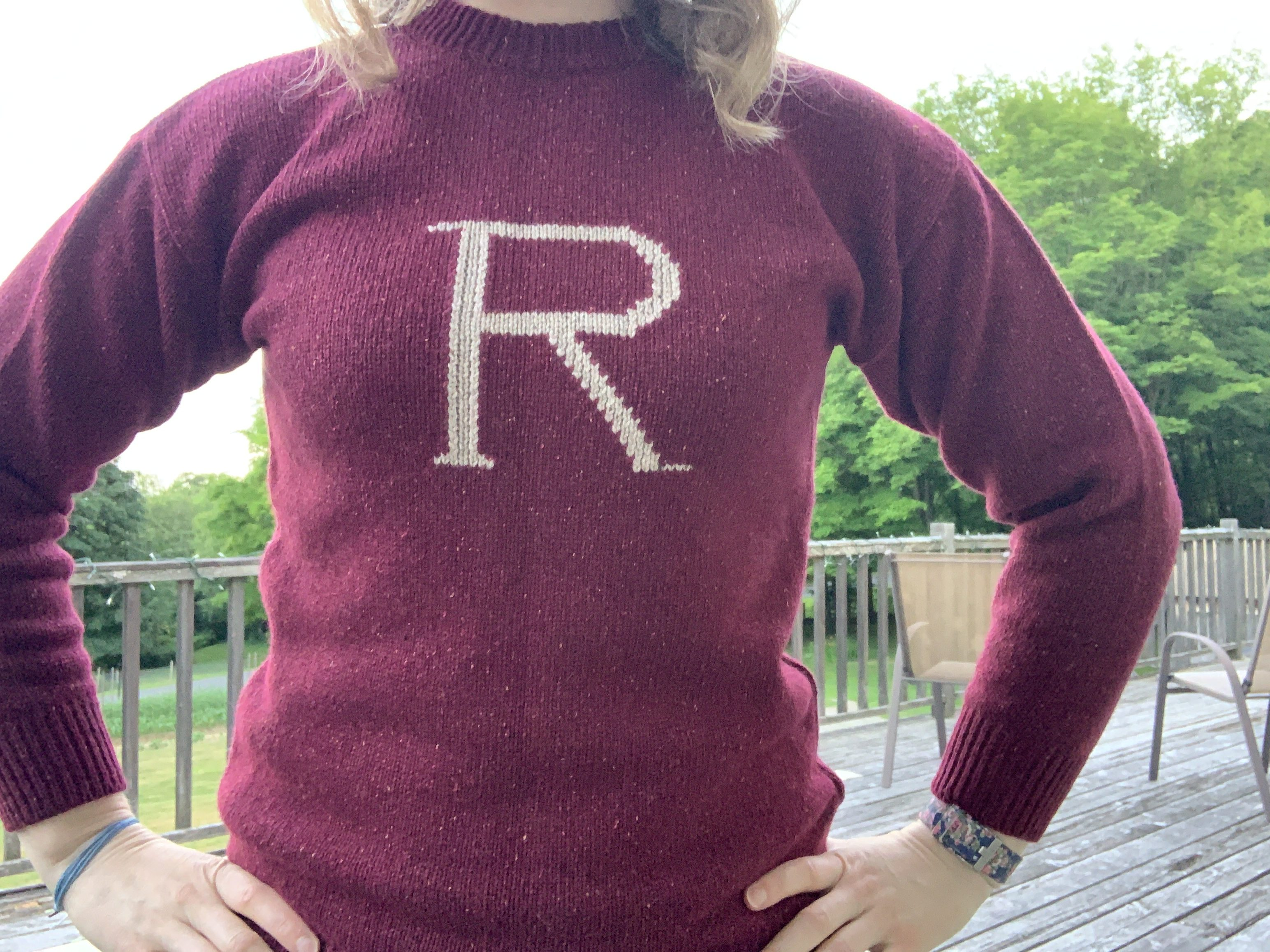 """Close up on the """"R"""" in the middle of the sweater"""