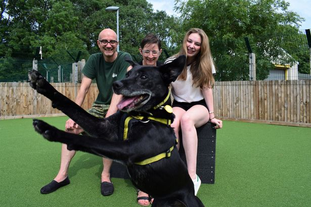 Harry Potter, the Shelter Dog, Pictured with His New Family