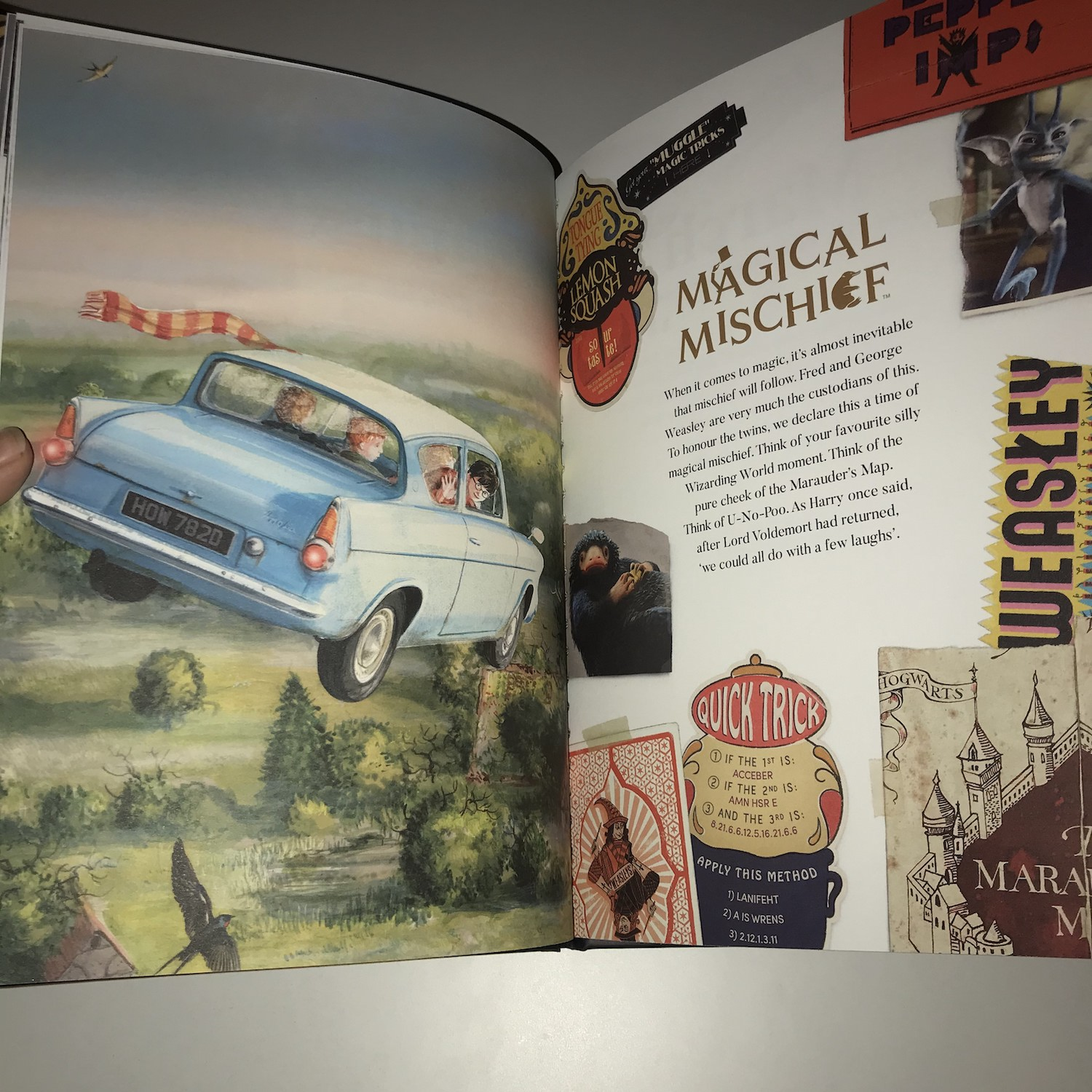 """You may recognize the illustration on the left page of this spread as the cover of Jim Kay's illustrated """"Harry Potter and the Chamber of Secrets""""."""