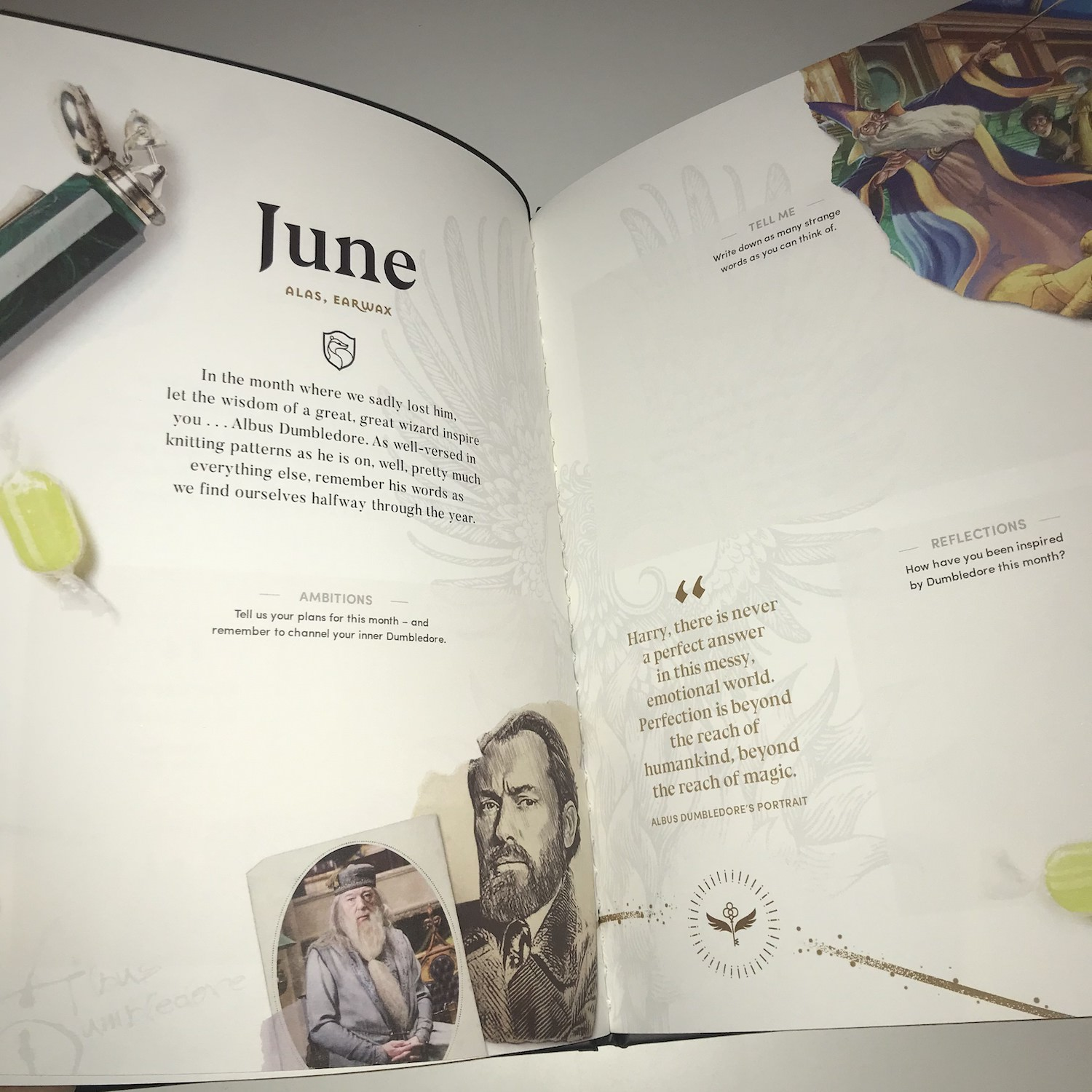 June is an homage to Albus Dumbledore, featuring his Deluminator, a lemon drop, and both Sir Michael Gambon and Jude Law in characters (but sadly, no Richard Harris!).