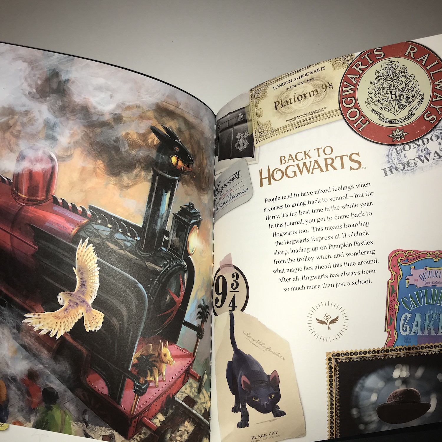 """You may recognize the illustration on the left page of this spread as the cover of Jim Kay's illustrated """"Harry Potter and the Sorcerer's Stone""""."""