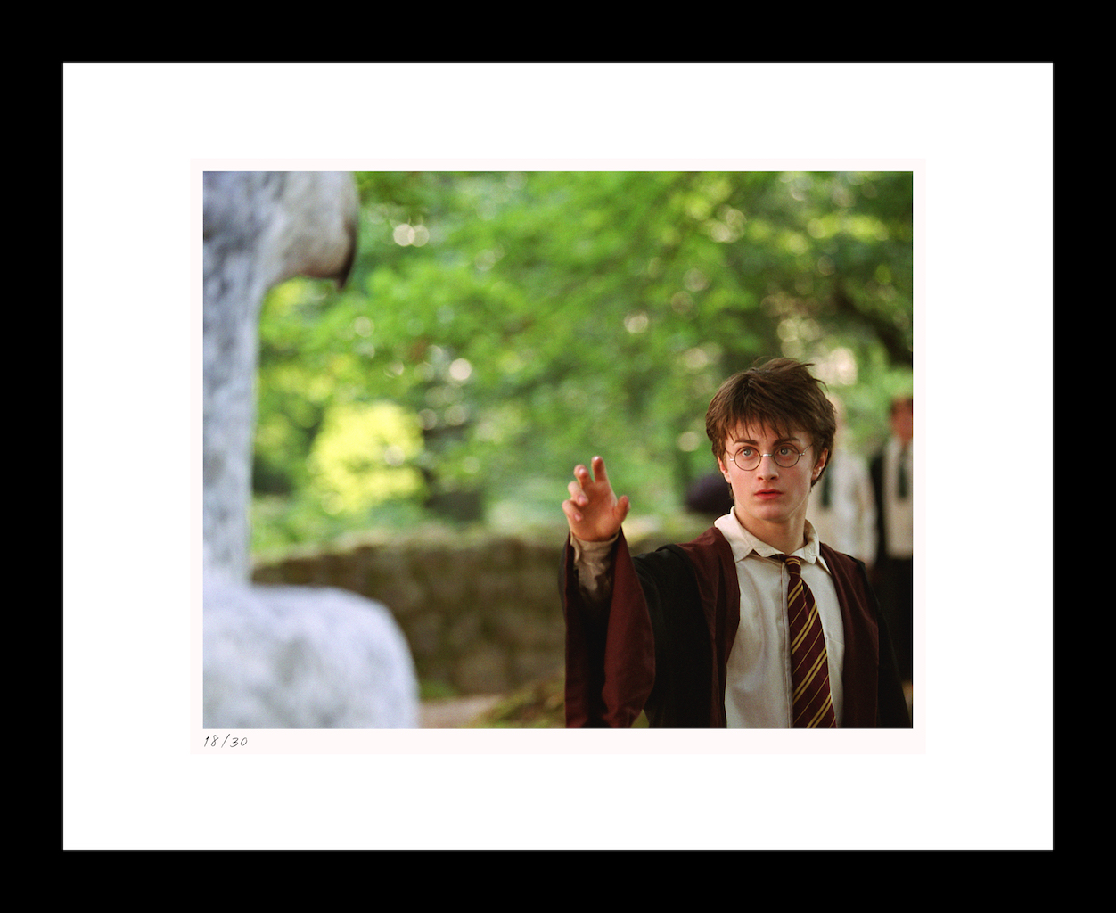 "Classic Stills ""Harry Approaches Buckbeak"""