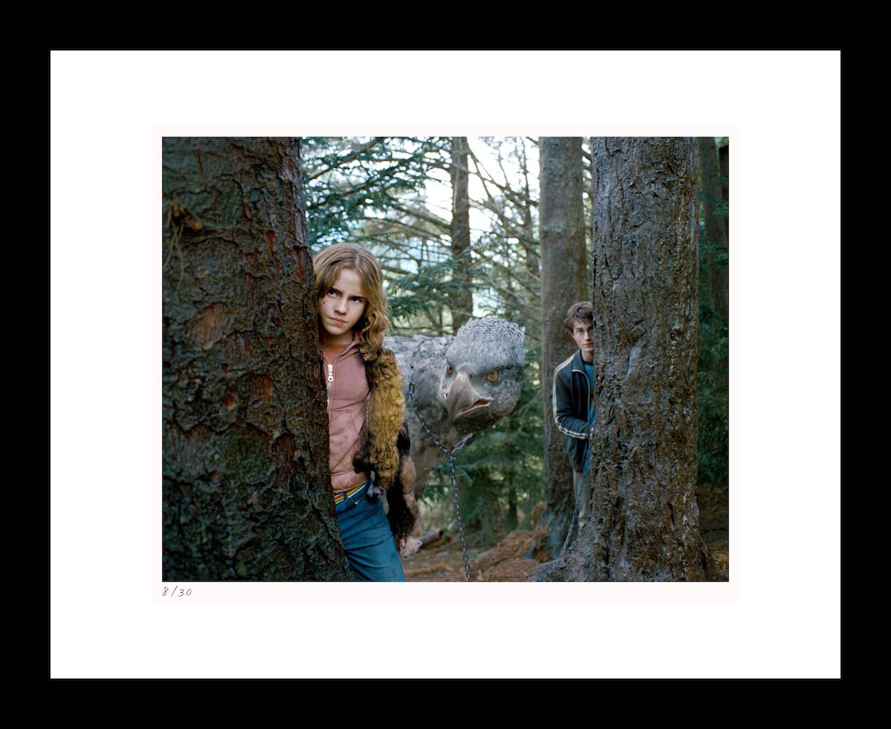 "Classic Stills ""Harry, Hermione & Buckbeak"""