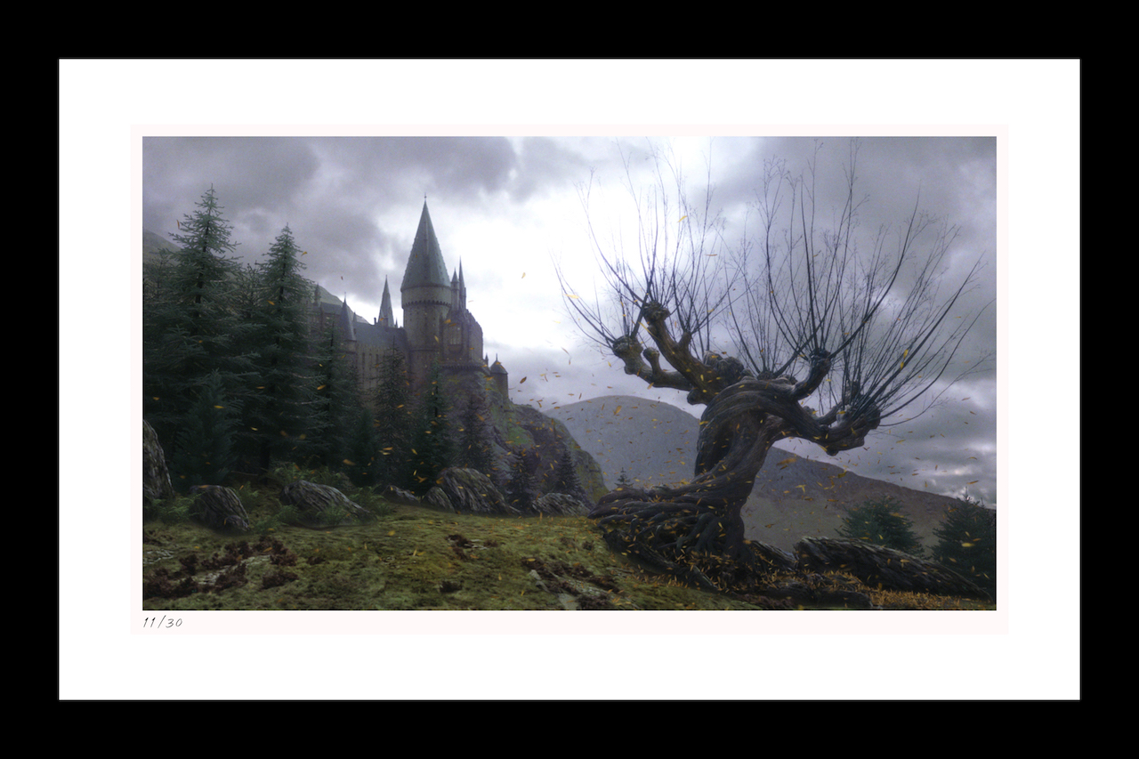 "Classic Stills ""The Whomping Willow"""