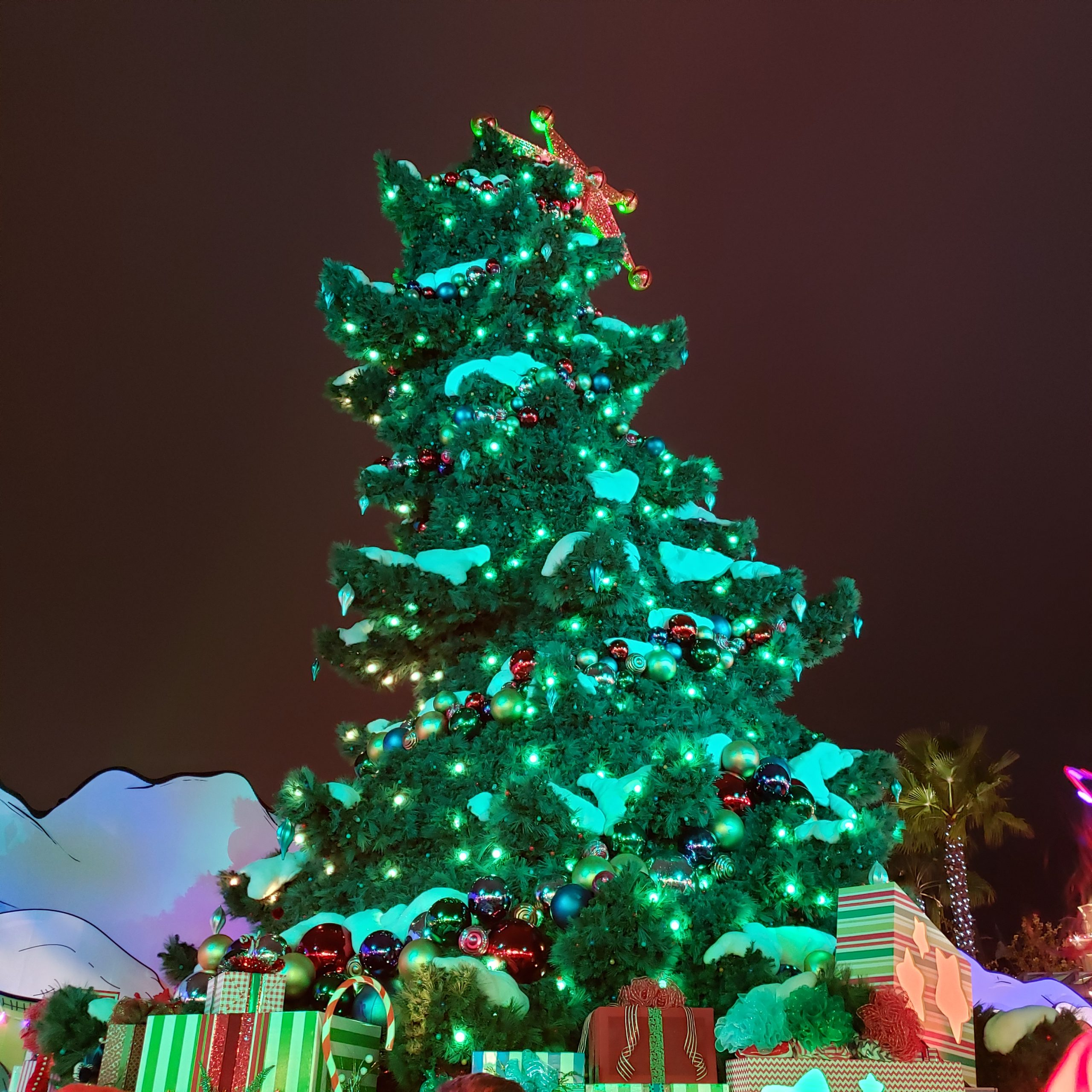 Catch the tree lighting every half hour!