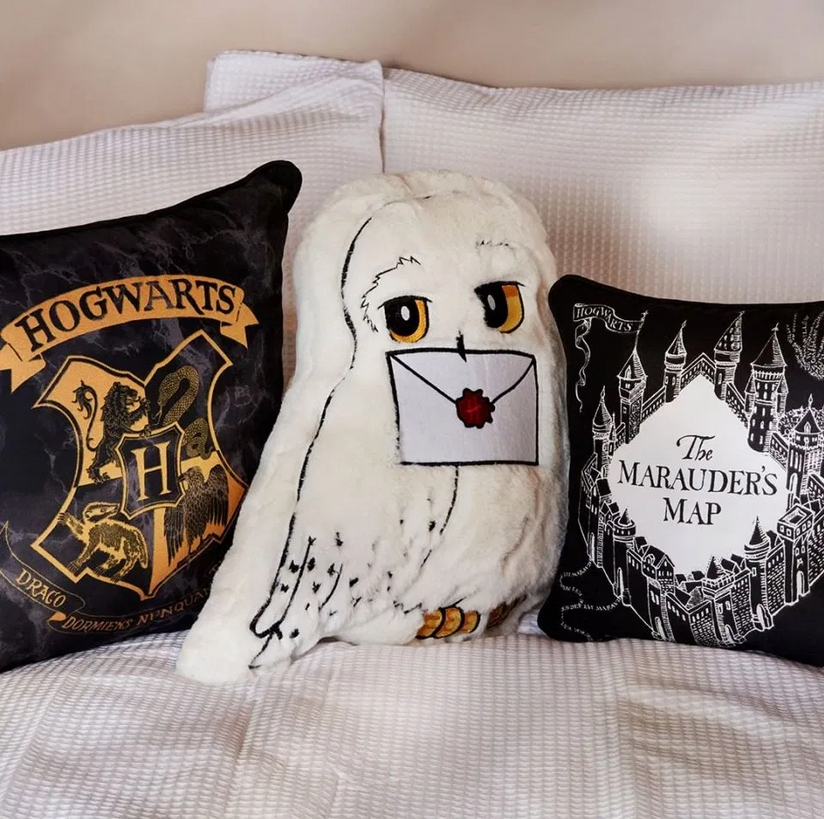 "A set of ""Harry Potter""-inspired throw pillows from Primark is pictured."